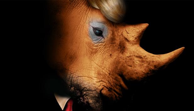 rhino eif